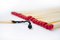 Burned out match. One burned out match next to red head matches isolated on a white background Stock Photos