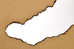 Burned paper background Stock Image