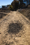 Burned Patch on Walking Trail. Charred black patch of ground in walking trail near wildfire in California Stock Images