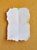 Burned white sheet pinned on cork bulletin board Stock Image