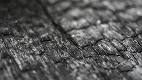 Burned wood along. Burned wood macro structure, sliding camera movement stock video