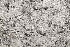 Burned wood ash background Stock Photo