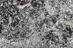 Burned wood ash background from fireplace Stock Images