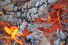 Burned wood Royalty Free Stock Images