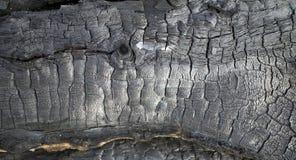 Burned wood Stock Photography