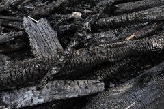 Burned wood logs Stock Images