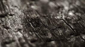Burned wood close up. Burned wood macro structure, sliding camera movement stock video footage