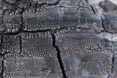 Burned Wood Narrow Focus Close Up Royalty Free Stock Images