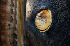 Burned wood Stock Photos
