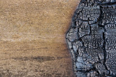 Burned Wood On Right Copy Space On Left Royalty Free Stock Image