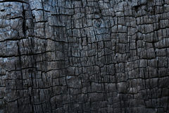 Burned Wood texture. Close up.  close up stock image