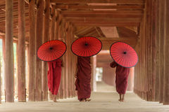 Burnese Buddhist novices stock photography