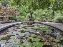 Burnett Fountain im Sommer stockbilder