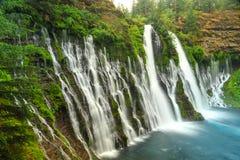 Burney faller vattenfallet i Kalifornien nära Redding Arkivfoto