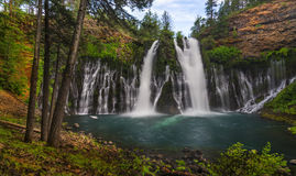 Free Burney Falls In Spring Stock Photography - 95543272
