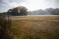 Burnham Beeches UK - 7 November 2016: Frosty Autumn Landscape At Burnham Beeches i Buckinghamshire Arkivfoton