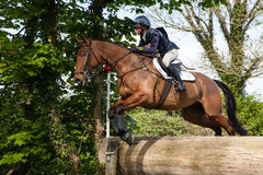 Burnham Market internationella hästförsök 2017 Royaltyfria Bilder