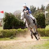 Burnham Market internationella hästförsök 2017 Arkivbild