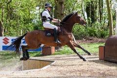 Burnham Market internationella hästförsök 2017 Fotografering för Bildbyråer
