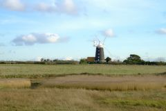 Windmill over the reed beds. Burnham Overy Staithe windmill viewed from across the inner marsh reed beds on an afternoon in January royalty free stock photography