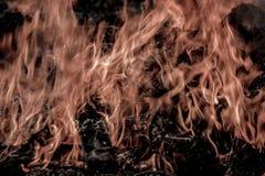 Burning électrique Photo libre de droits