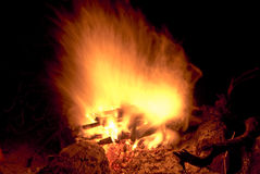 Burning. Wood in the night royalty free stock photo