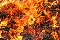 Burning Royalty Free Stock Images