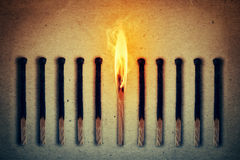 Burning alone. Burning match standing middle a row of extinguished, burnt matches. Leadership concept royalty free stock photo