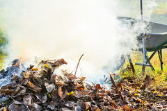 Burning autumn leaves in the garden Royalty Free Stock Images