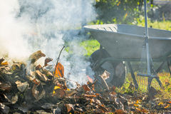 Burning autumn leaves in the sunny garden Royalty Free Stock Photos