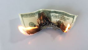 Burning banknote stock video