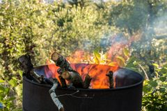 Burning barrel in the middle of the garden royalty free stock photo