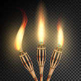 Burning Beach Bamboo Torch. Burning In The Dark Transparent Background Realistic Torch With Flame. Vector Illustration. Burning Beach Bamboo Torch With Flame Stock Image