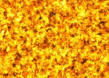 Burning big fire backgrounds. Burning heat big fire backgrounds Royalty Free Stock Photos