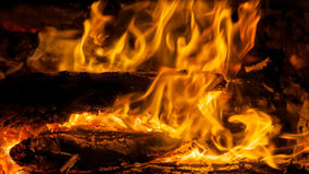 Burning billets in hot stove Stock Images