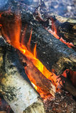 Burning birch firewood Royalty Free Stock Photo
