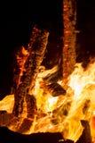 Burning bonfire Stock Image