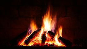 Burning bonfire Royalty Free Stock Photo