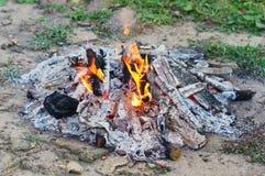 Burning bonfire Stock Photography