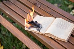The book burns. Royalty Free Stock Images