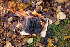 The book burns. Royalty Free Stock Photography