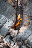 Burning branch ignited by the heat of lava on Tolbachik Volcano Stock Photo