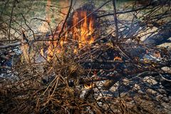Burning branches and brush and flames. Burning branches and brush in backyard showing flames and hot ash stock photo
