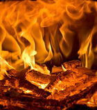 burning brand royaltyfri bild