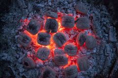 Burning briquettes in the evening light. Close-up with soft bokeh Stock Images