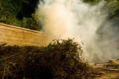Burning brush in the caribbean Stock Photo