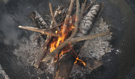 Burning camp fire with coals and flames Royalty Free Stock Image