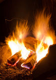 Burning campfire Stock Images