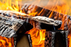 Burning campfire Royalty Free Stock Photography