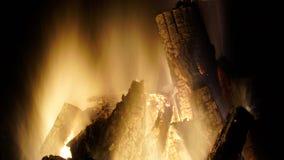 Burning campfire close up Royalty Free Stock Photo
